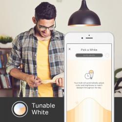 TP-LINK KL120 Smart WiFi Bulb Tunable